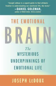 Book cover for The Emotional Brain