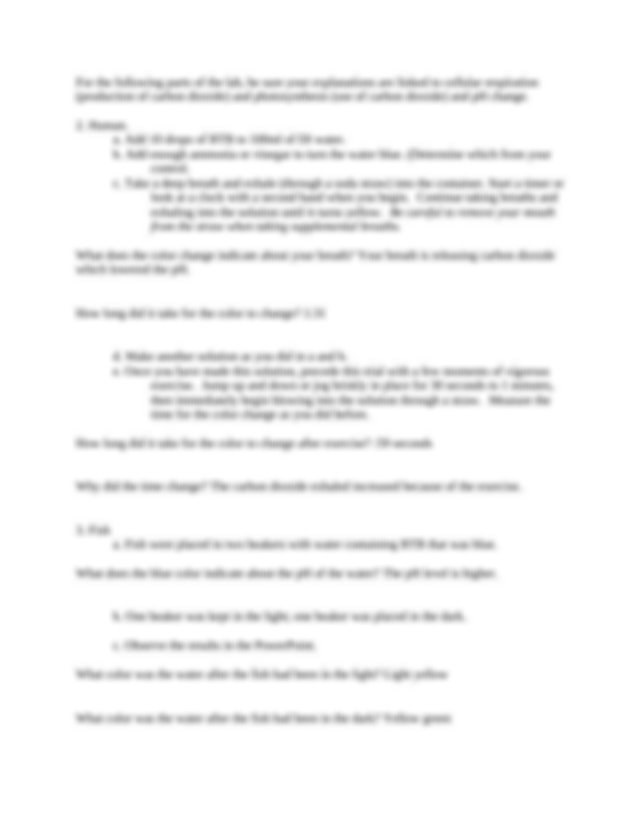 The Carbon Cycle Worksheet Manual Guide