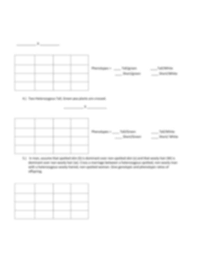 4-Dihybrid-cross-WS.pdf - Name Period Worksheet Dihybrid ...