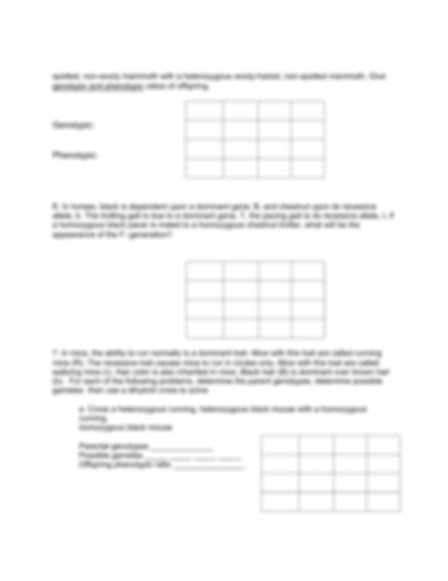 Dihybrid cross practice.pdf - Name Period Worksheet ...