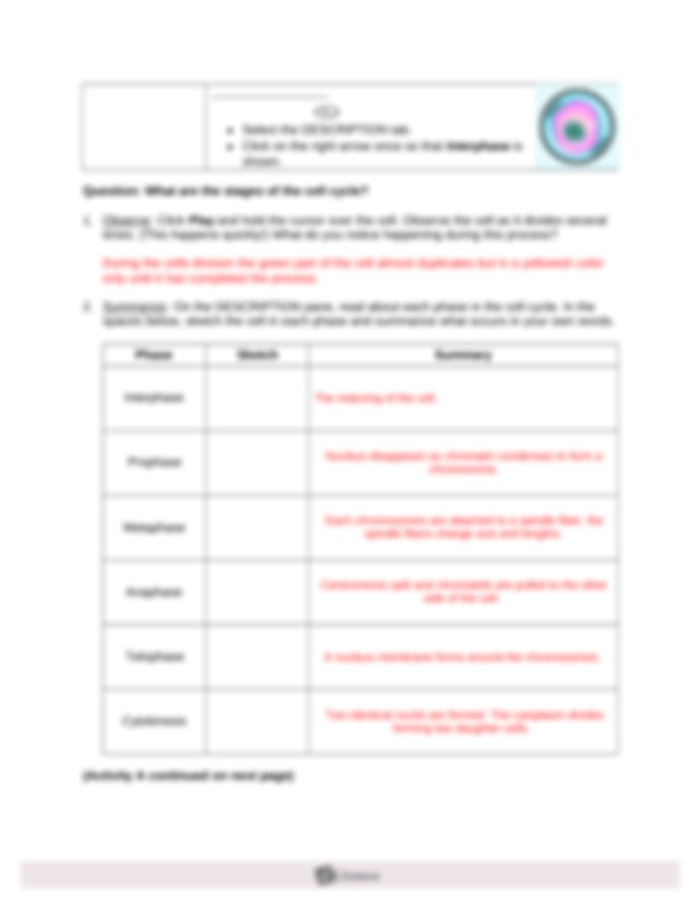 cell division gizmo - Name Thomas Bollerup-Lindenborg Date ...