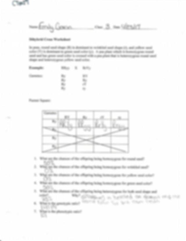 biology5 - Us Name E Emily g Class:32 Date U125 Z Dihybrid ...