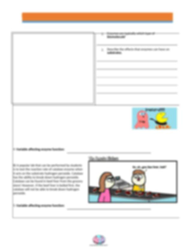 video_recap_of_enzymes_by_amoeba_sisters work sheet.docx ...