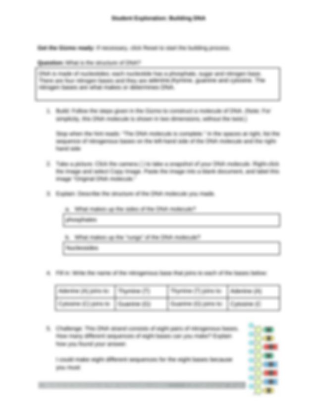 Copy of Gizmos_ Building DNA Activity.docx - Student ...