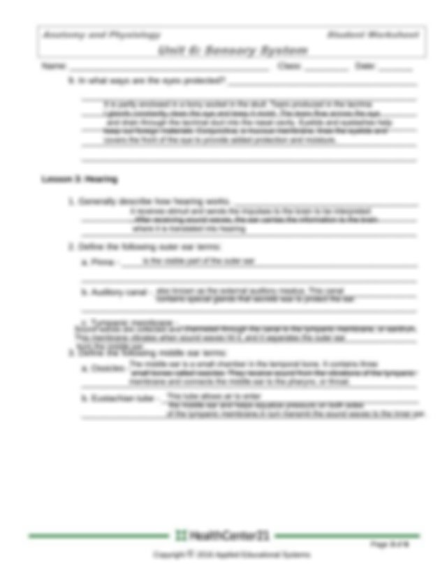 sensory system - Anatomy and Physiology Student Worksheet ...