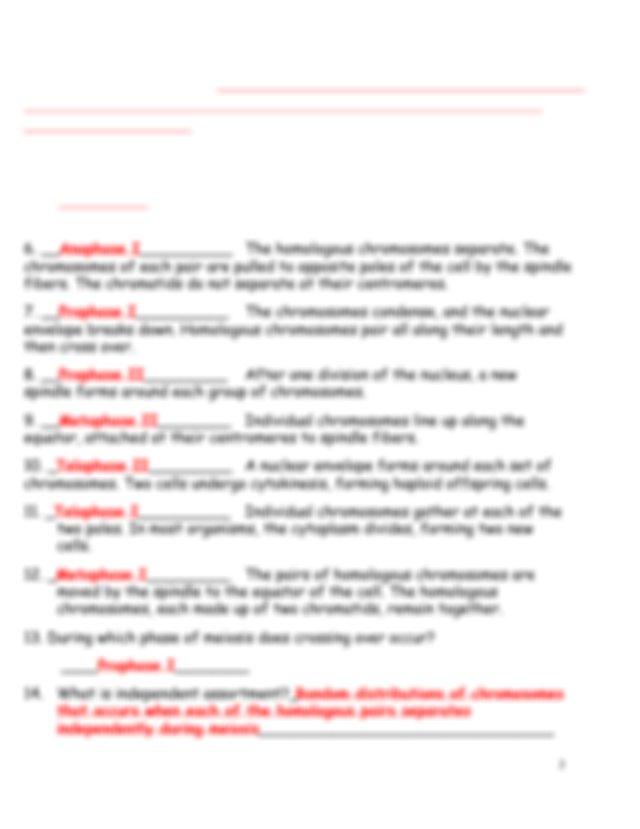 A1) Meiosis Worksheet Answer Key.pdf - Meiosis ...
