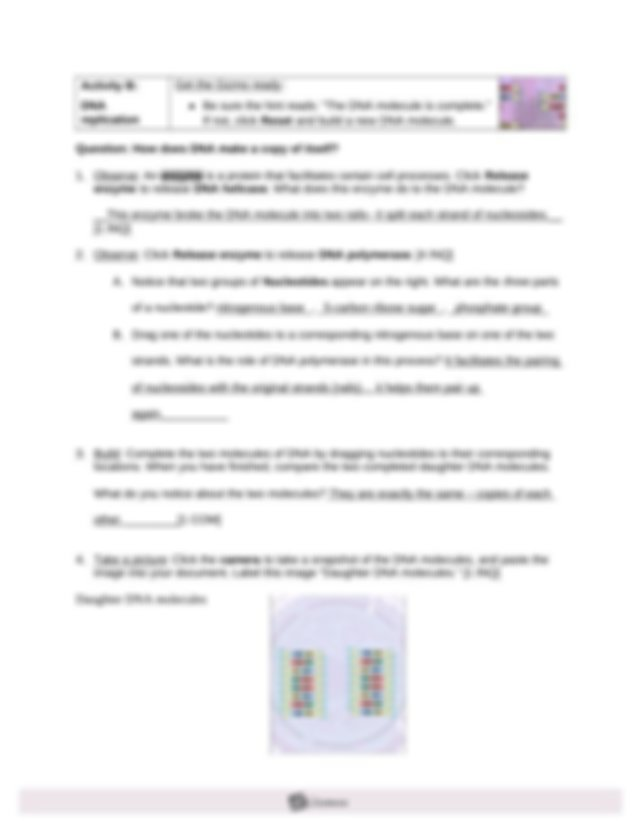 GIZMO 4 - BUILDING DNA REVISED - Name Date Student ...