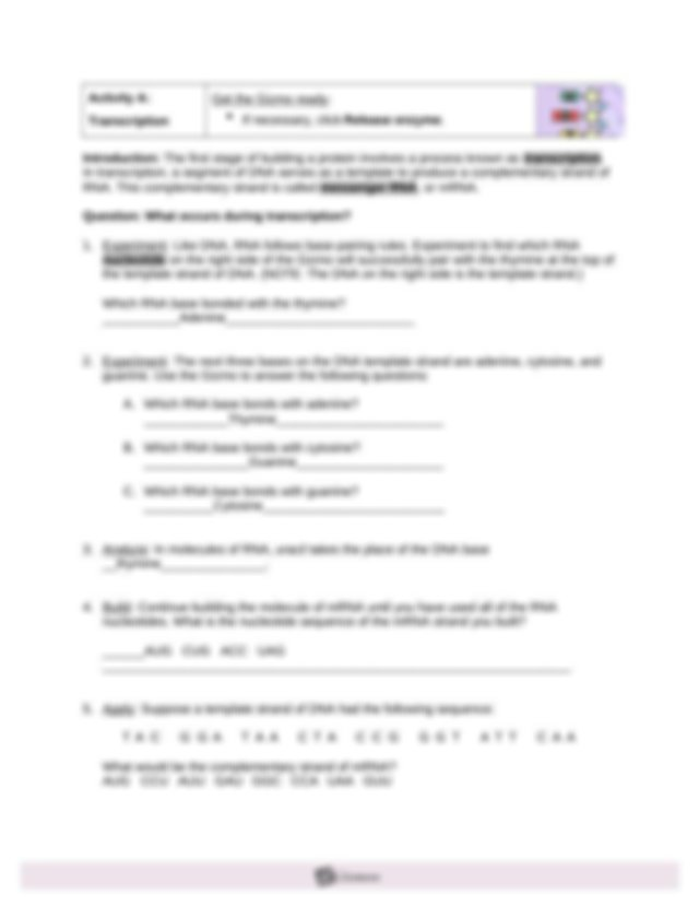 Assignment VII.5 RNA and Protein Synthesis GIZMO (3).doc ...