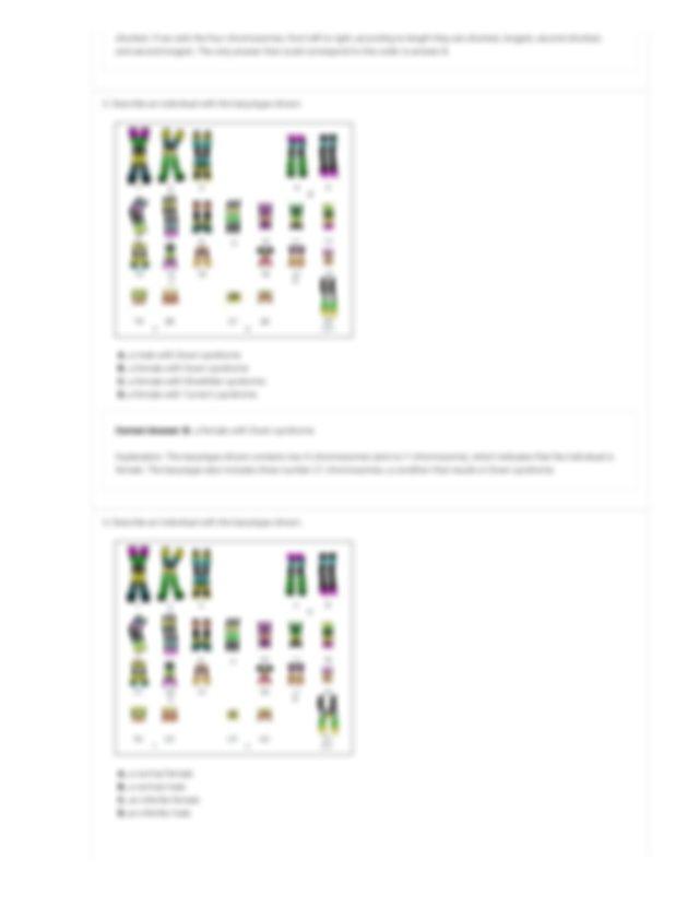 Human Karyotyping Gizmo - ExploreLearning.pdf - ASSESSMENT ...