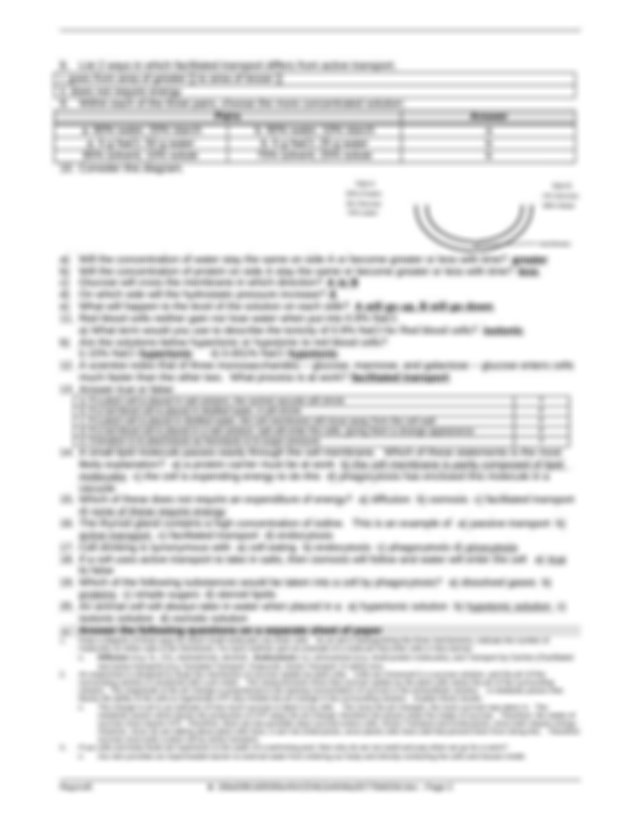 Worksheet - Cell Membrane - Review Worksheet Key.doc ...