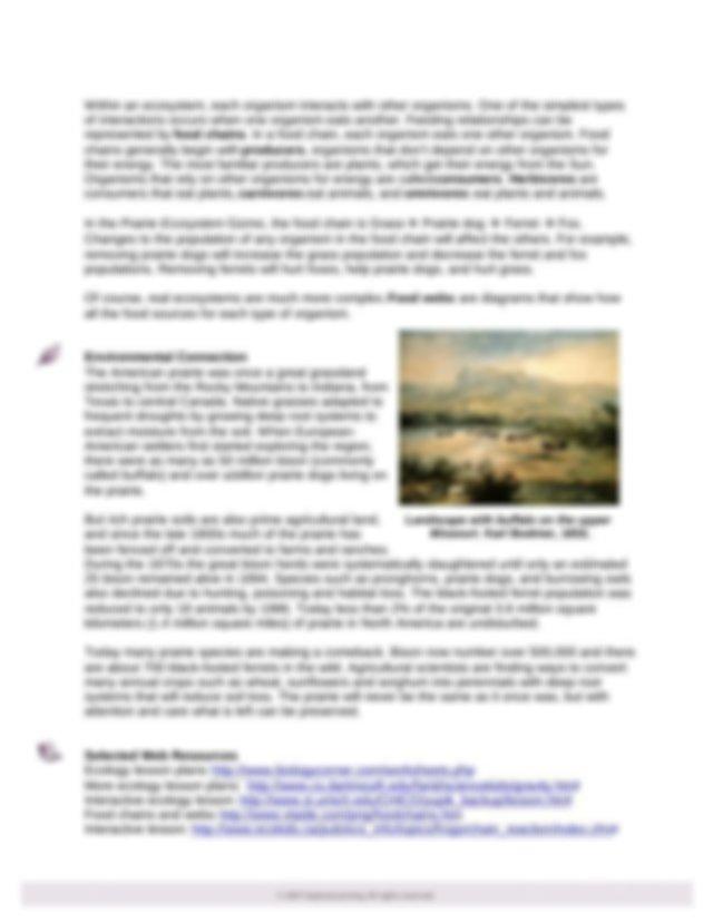 Prairie_Ecosystem_TEACHER NOTES - Teacher Guide Prairie ...