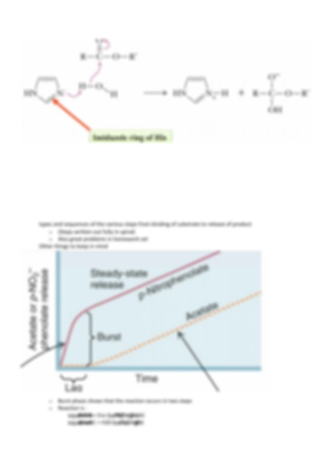 foto de MCB 450 Final exam study guide1 55 Part23 An acid or