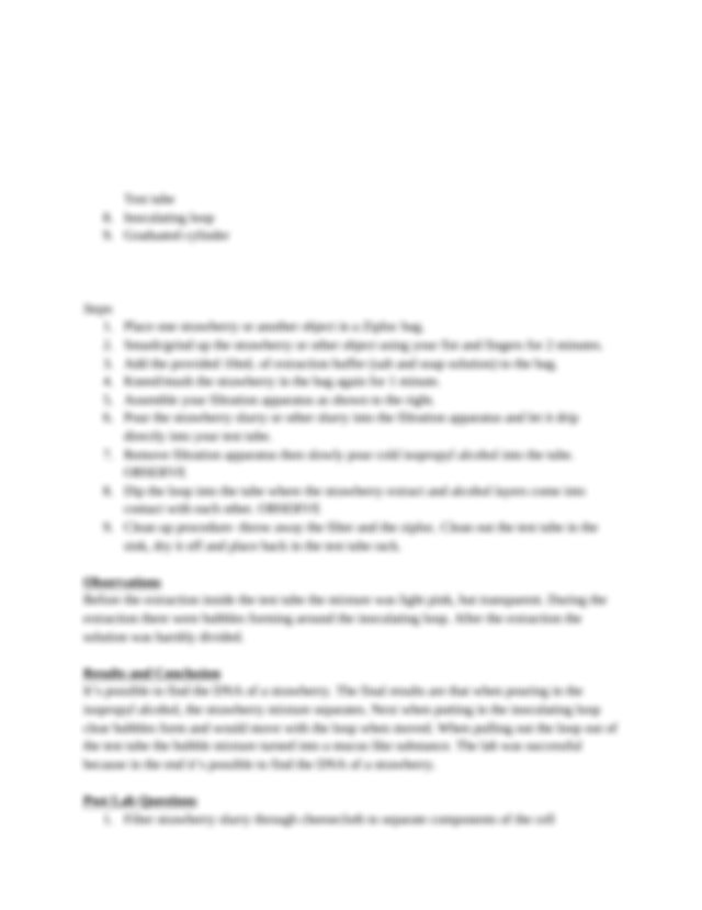 Strawberry_DNA_Extraction_Lab_Report - Strawberry DNA ...
