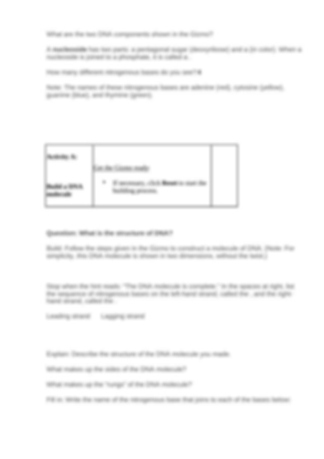 Student Exploration- Building DNA (ANSWER KEY).docx ...