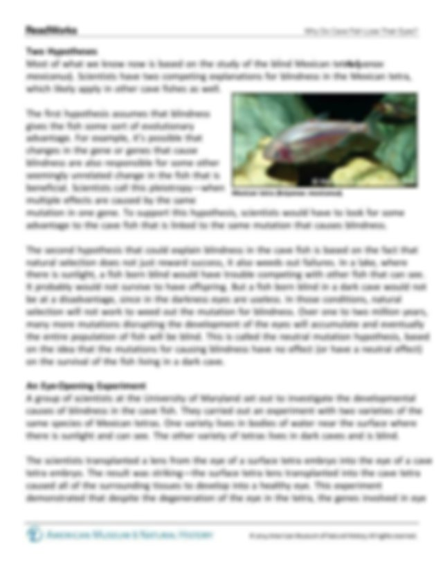 cave fish.pdf - Why Do Cave Fish Lose Their Eyes Why Do ...