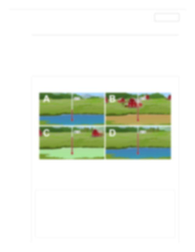 Pond Ecosystem Gizmo _ ExploreLearning.pdf - Pond ...