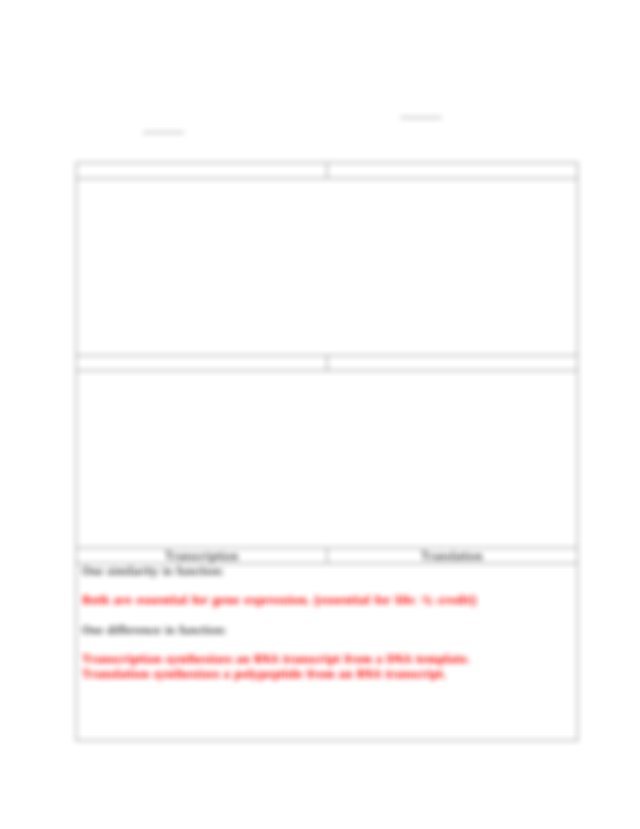 DNA-worksheet-ans.pdf - DNA Replication Transcription ...