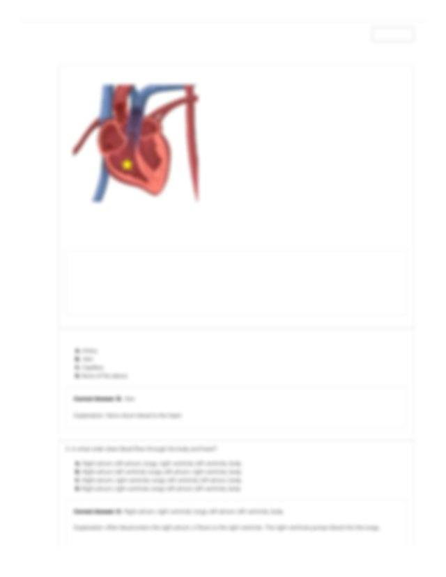 Circulatory System Gizmo - ExploreLearning.pdf ...