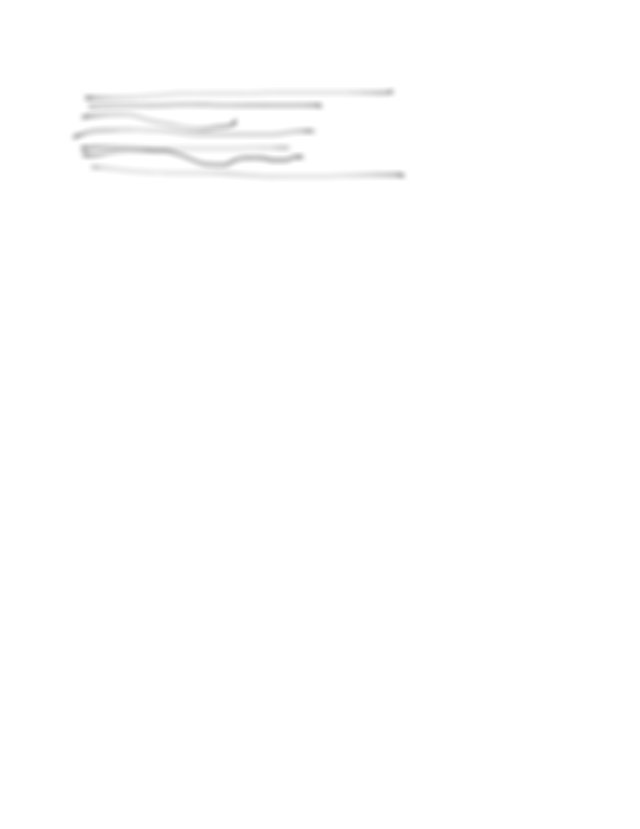 Executive Branch Packet - WORKSHEET The Executive Branch ...
