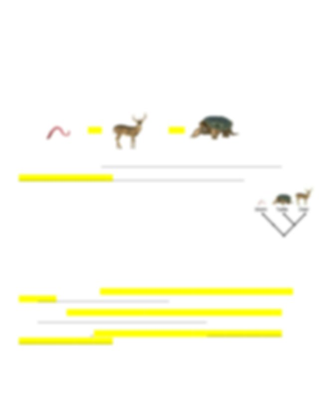 Cassie Campbell - Gizmos Cladogram.odt - Student ...