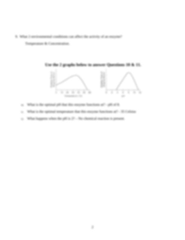 Enzyme Activity Worksheet.doc - Name Destiny Garcia Date ...