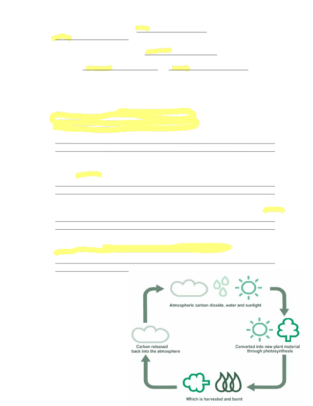 biogeochemical_webquest_answer_key.docx - Name Date ...