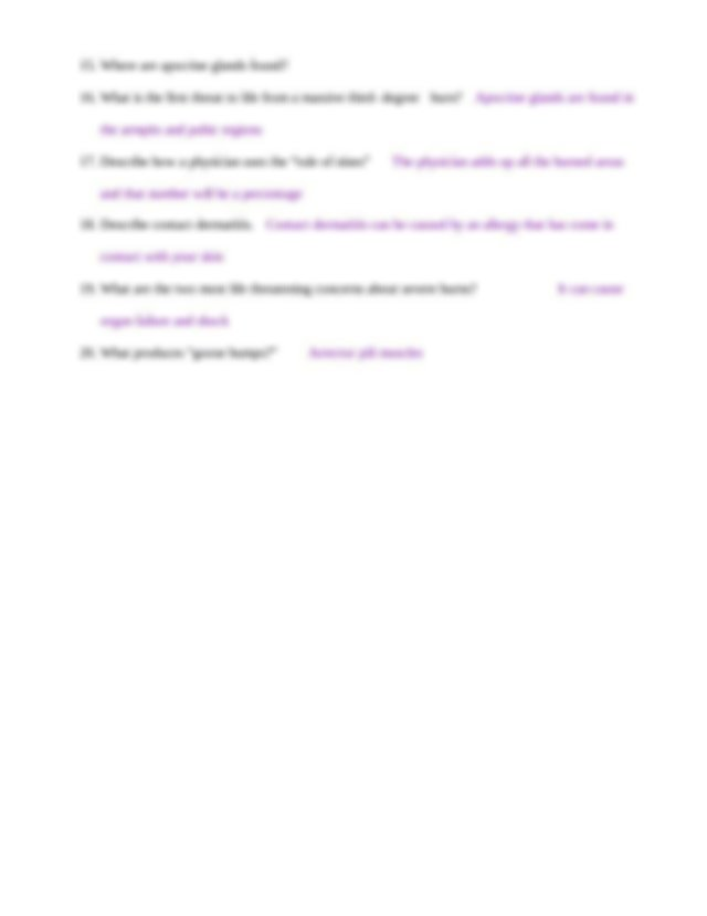 Chapter 4 Student Worksheet - Anatomy and Physiology ...