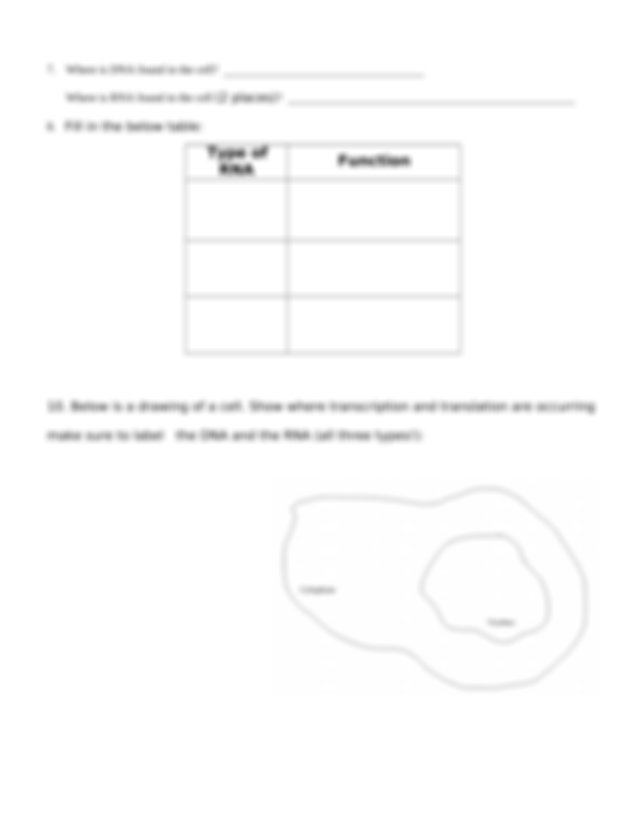 Transcription And Translation Practice Worksheet.doc - Transcription And Translation  Practice Worksheet \u2013 Please Do Not Write On This Sheet For Each  Course Hero
