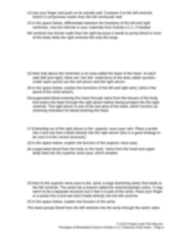 4.1.2.A AnatomyHeartF (1) - Activity 4.1.2 Anatomy of the ...