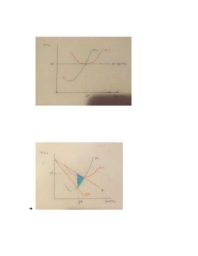 5.5.6 Test (TST)_ Market Structure.pdf - AP Microeconomics ...