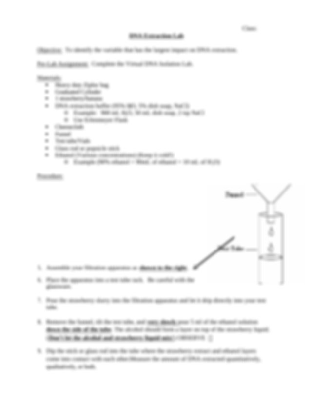 DNA Extraction Lab Instructions - Name Date Class DNA ...