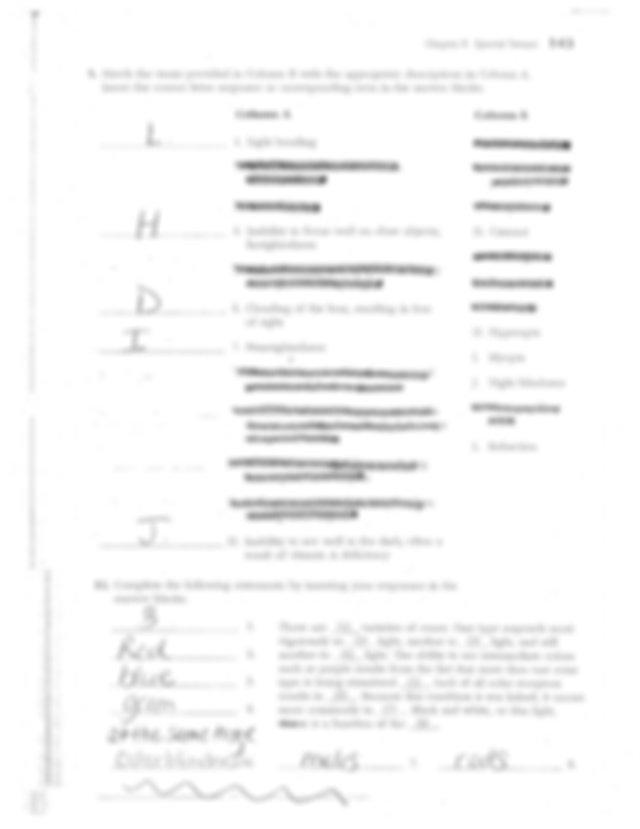 Study Guide Key Senses.pdf - Identify each of the eye ...