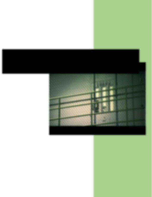 Essay writing app review - advocatesinternational.org
