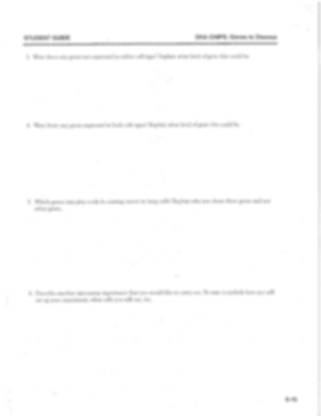 Give me example of essay analytic