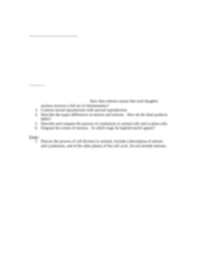 Dissertation film studies