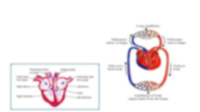 Nutrition, the Heart, and the problems associated with ...