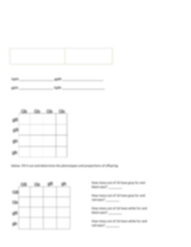 chapter-6-dihybrid-cross-wksht.pdf - Name_Period_Date ...
