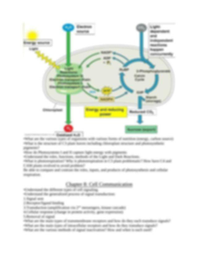 BIO122 Final Exam Study Guide.docx - BIO 122 FINAL EXAM ...