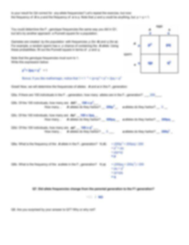 Worksheet_Hardy-Weinberg_key_HJ.pdf - Will everyone ...
