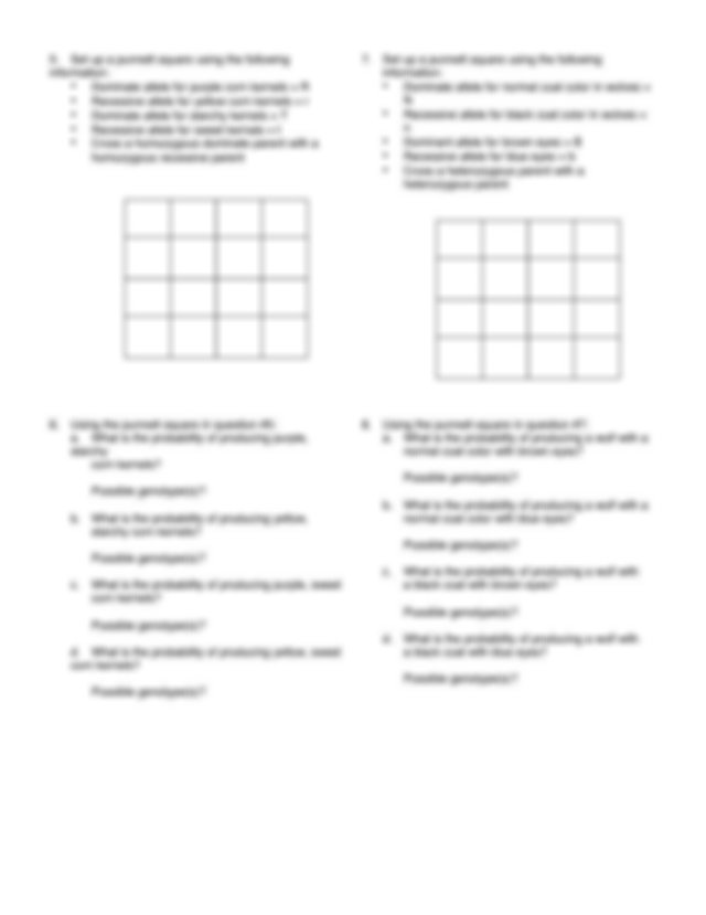 CPE Dihybrid Cross - Dihybrid Cross Worksheet 1 Set up a ...