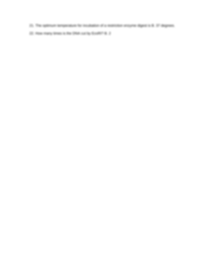 Molecular Lab Review Final Exam - Molecular Lab Review 1 ...