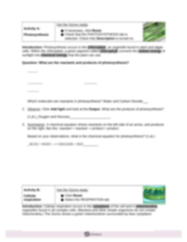 Copy of Cell Energy Cycle Gizmo Worksheet - Name Date ...