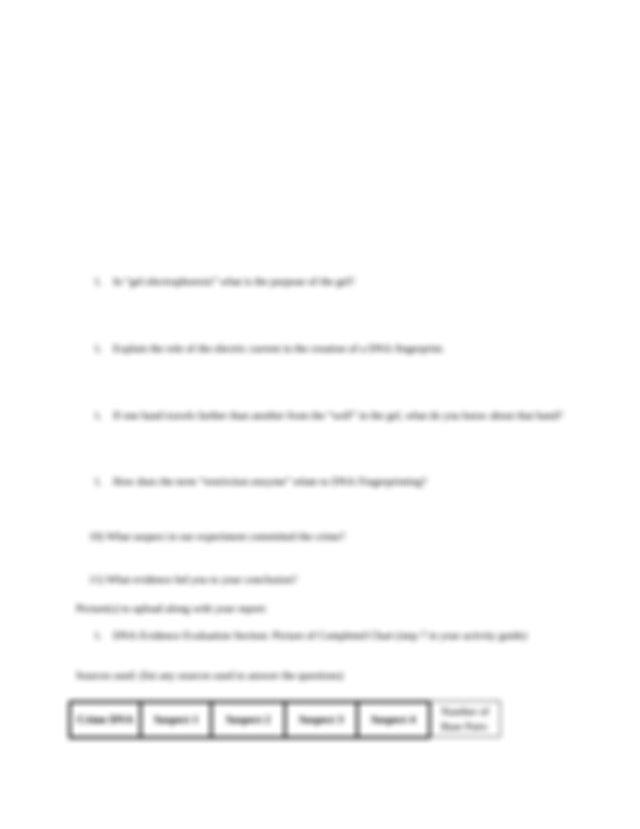 lab 10.docx - General Biology Lab Report Lab 10 \u2013 DNA ...