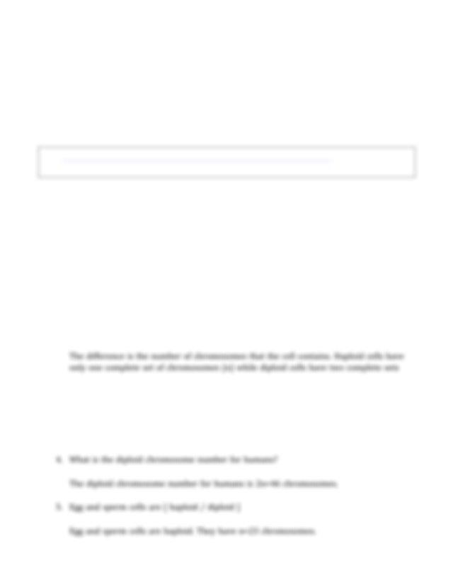 Meiosis_Worksheet.pdf - Meiosis In this worksheet you will ...
