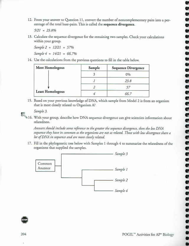 pogil_phylogenetic_trees_key.pdf - Phylogenetic Trees How ...
