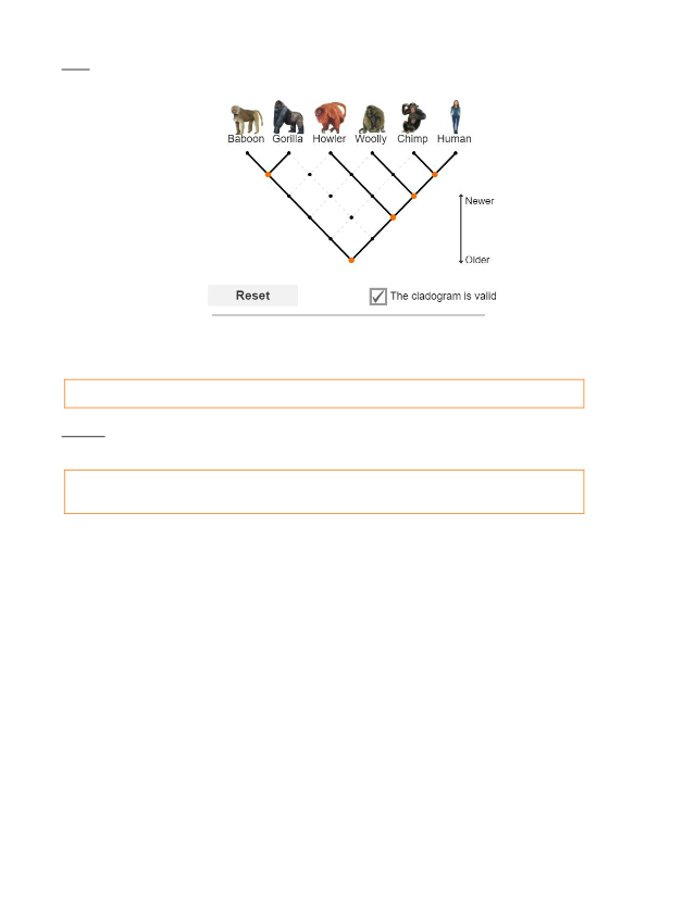 Pranav Jithesh - Cladograms.pdf - Name Pranav Jithesh Date ...