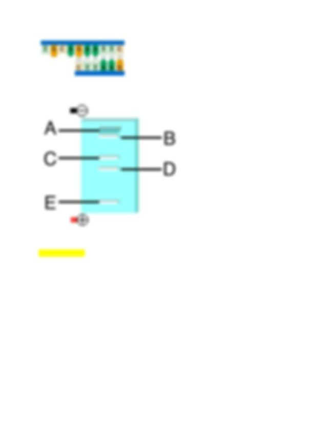6 DNA ligase catalyzes the formation of phosphodiester ...