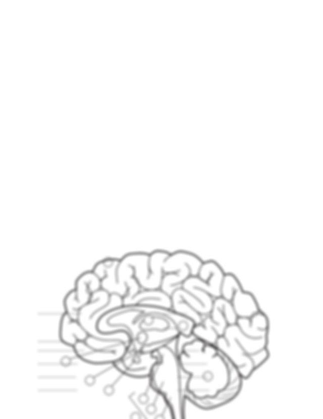AAB_brain_parts1 - Whats In Your Brain The parts of the ...