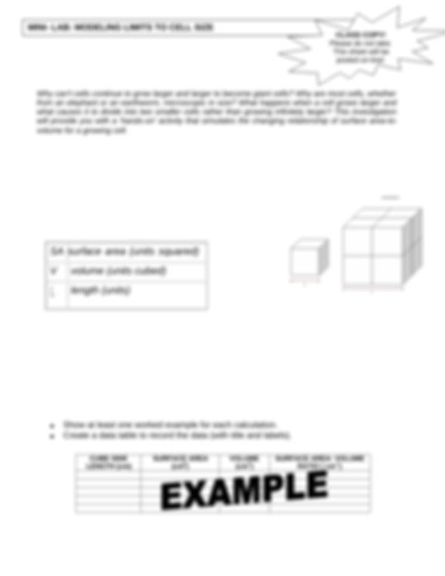 Limits to Cell Size Cube Lab.pdf - MINI LAB MODELING ...