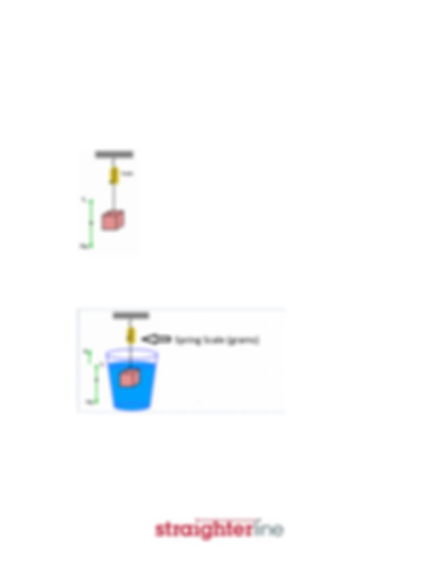 Worksheet Lab7 Buoyancy And Archimedes Principle Docx